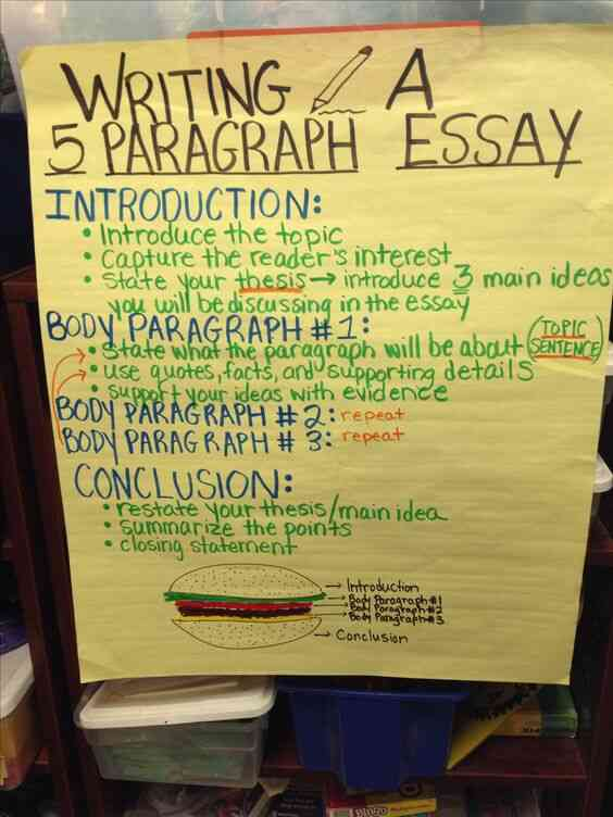 Write the essay